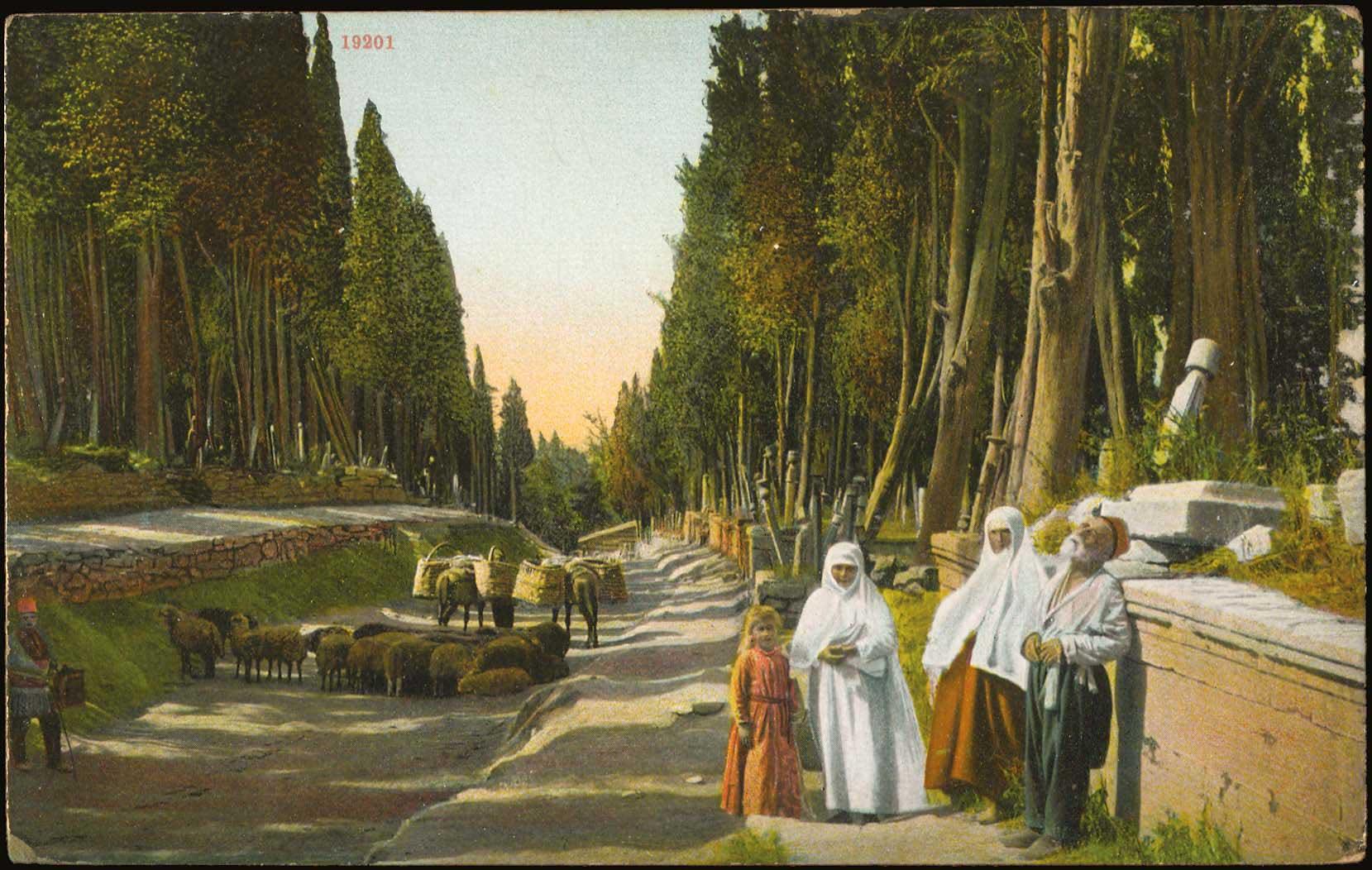 Lot 1760 - -  PICTURE POSTCARDS SMYRNE, CONSTANTINOPLE, ASIA MINOR -  A. Karamitsos Public & Live Internet Auction 675